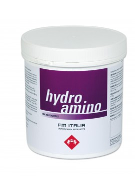 HYDRO AMINO idrosolubile con aminoacidi ramificati vaso in polvere 3000 g