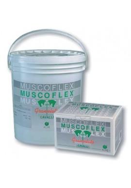 Muscoflex granulato mangime complementare 40 buste da 25 g