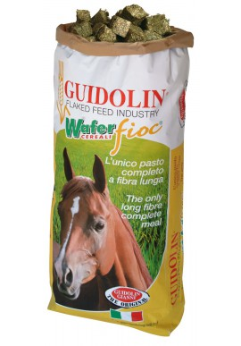GUIDOLIN WAFER FIOC PLUS